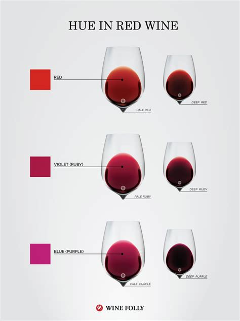 wine color what color tells you about a wine wine folly