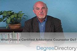 certified college advisor description of counseling psychology