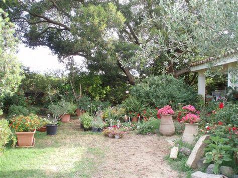 scorcio giardino foto di nel giardino in fiore