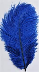 Vase Fillers Bulk Discount Navy Blue Ostrich Feathers Wholesale Bulk Wedding