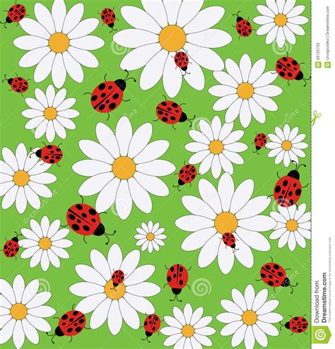 daisy background pattern vector daisy and ladybug pattern stock vector image 66720733
