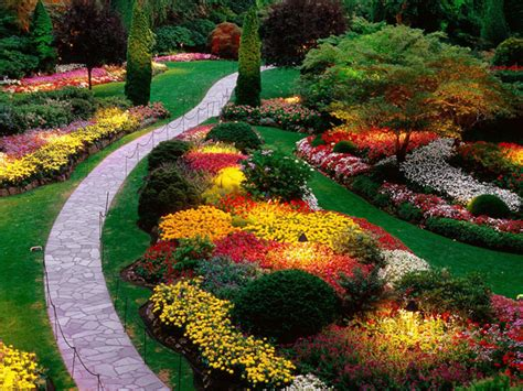 Gardening Ideas For Beginners Useful Home Gardening Tips For Beginners