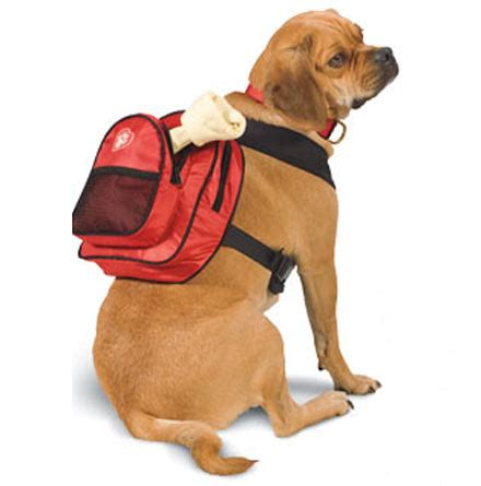 backpack for dogs classyruff backpack barking bitches barking bitches