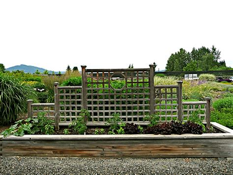 Small Plant Supports by Edible Gardens Potagers Mount Hood Gardens Inc