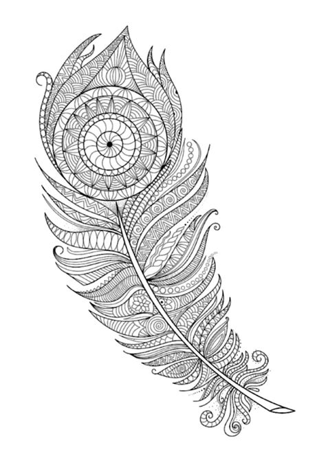 feather coloring page feathers coloring page 7 by artist witton