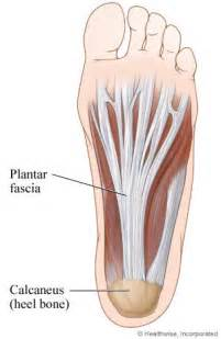 sports injuries explained should albert pujols foot