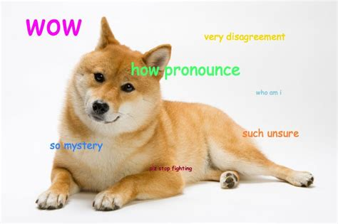 Meme Dog Wow - doge pronunciation how do you pronounce the name of the