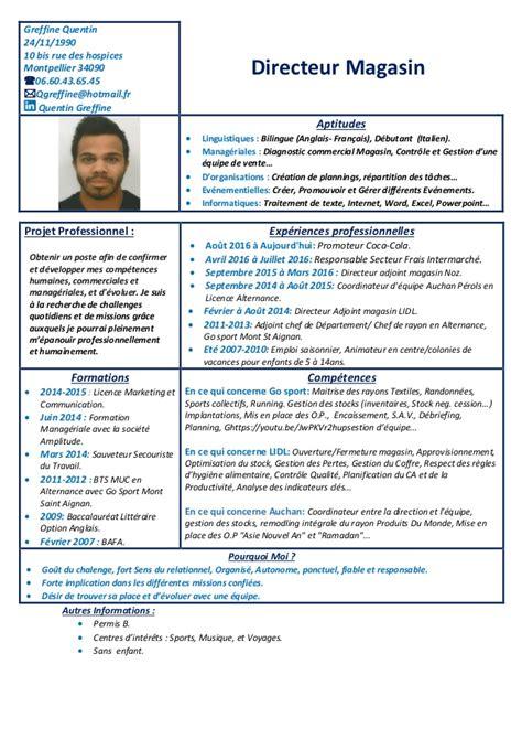 exle curriculum vitae sales cv directeur g 233 n enterprise sales executive resume