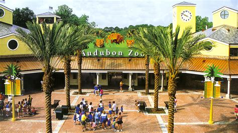 summerlin lions new year audubon zoo the cultural landscape foundation