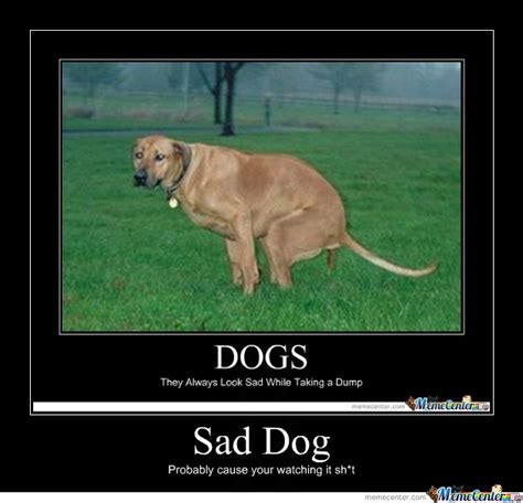 Sad Dog Meme - sad dog by theodore meme center