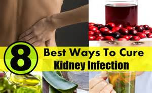 kidney infection home treatment 8 best ways to cure kidney infection diy health remedy