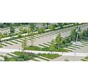 Commercial Parking Lot Design  Landscape Architecture