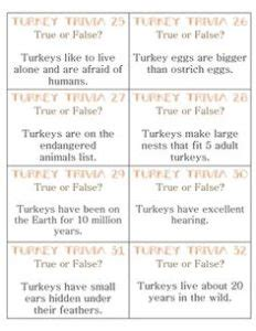 best thanksgiving trivia question 10 thanksgiving trivia questions baby