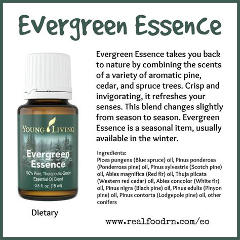 Glf Detox by Evergreen Essence Essential Refresh Your Senses With