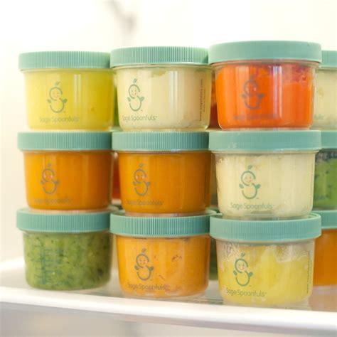 recipientes para congelar alimentos como congelar papinhas o manual das papinhas