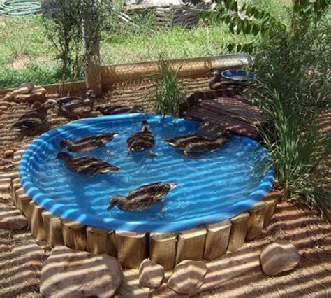 how to build a backyard garden backyard duck habitat how to build a duck deck