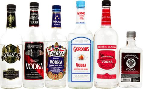 best cheap vodka the top 10 best vodkas