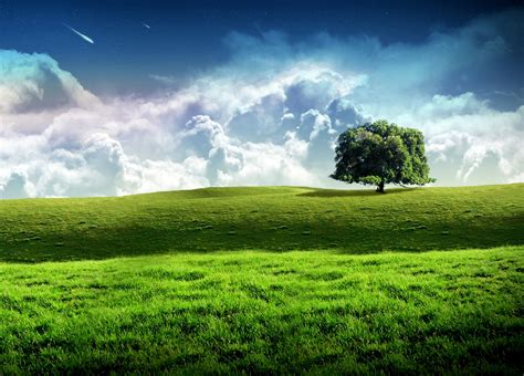 latest themes download for mobile windows nature pc walls new xp wallpapers windows7windows8