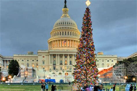 christmas trees dc in washington dc