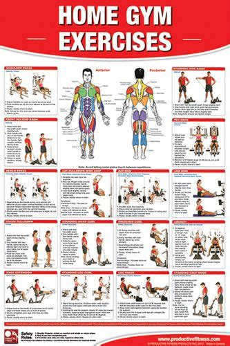 printable exercise instructions home gym exercises wall chart universal equipment