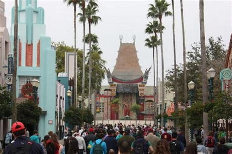 hollywood studios names disney s hollywood studios park in florida to get updated