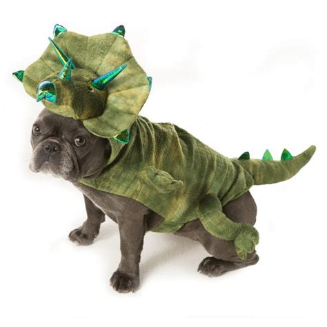 petsmart costumes wars and top list of most popular pet costumes 2016 daily