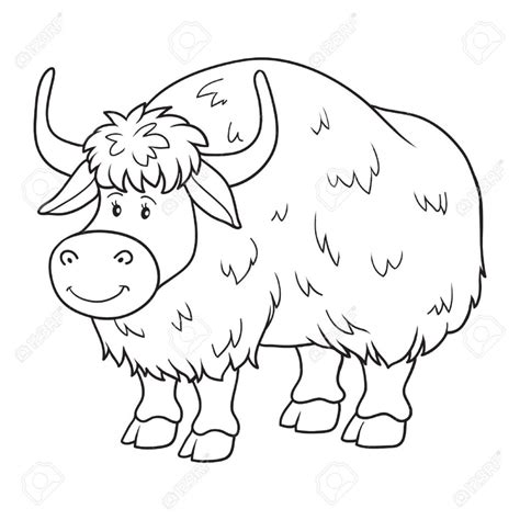 coloring book yak royalty free cliparts vectors and