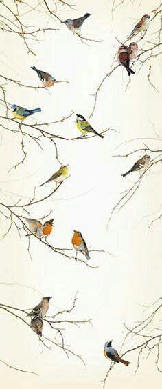 bird wallpaper for walls 1000 ideas about bird wallpaper on pinterest timorous