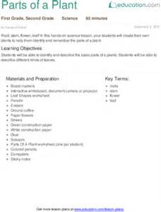 Components Of A Lesson Plan Template by Parts Of A Plant Lesson Plan Lesson Plan Education