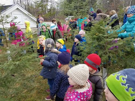 boothbay festival of lights edgecomb s tree decorating contest part of