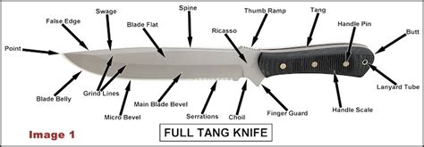 what is a tang on a knife knife anatomy
