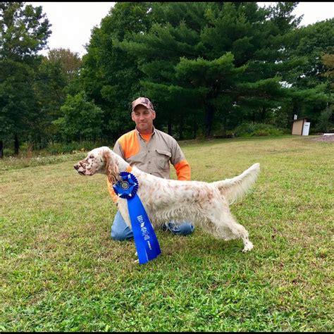 dog breeding bench 100 dog breeding bench shiloh k9 obedience training