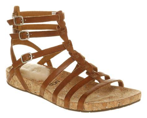Gladiator Shoes by Ugg Gladiator Sandal Gladiator Sandal