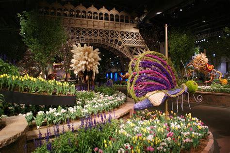international flower festival gangtok sikkim india   festival packages hotels
