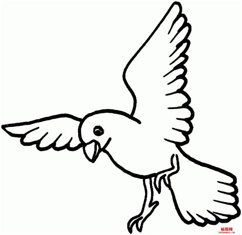 easy bird coloring page simple bird outline coloring pages