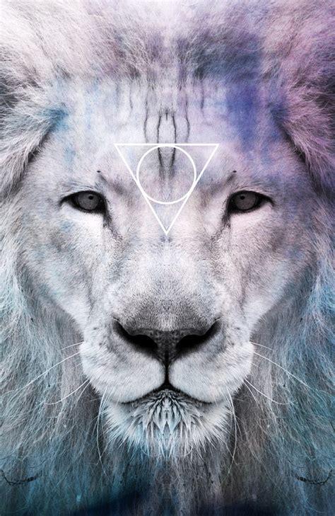 wallpaper tumblr lion lion tumblr triangle