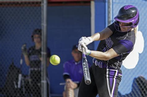 saginaw swan valley softball team splits tvc central title