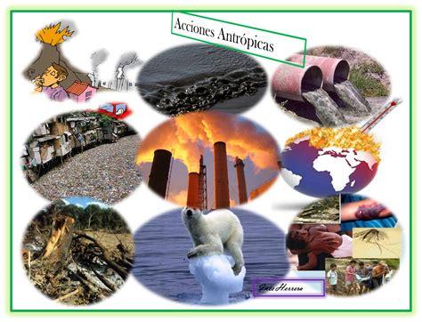 imagenes de recursos naturales vivos ecologia