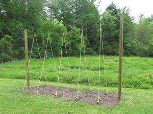 Hop Trellis Ideas Projects This Old Farmhouse