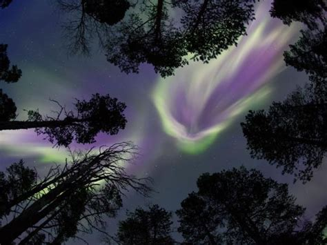 trips to see northern lights 2018 cheap holidays to see the northern lights 2017