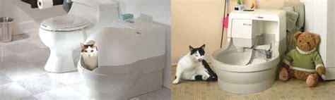 cassetta gatti autopulente catgenie automatica autopulente accessorigatti