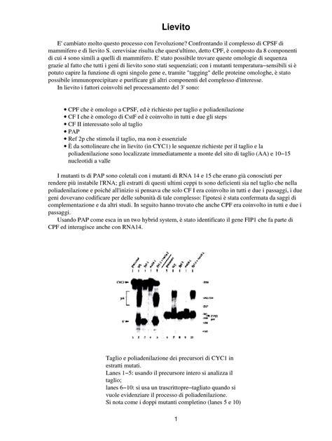 dispense biologia molecolare comparazione genetica tra lievito e mammiferi dispense