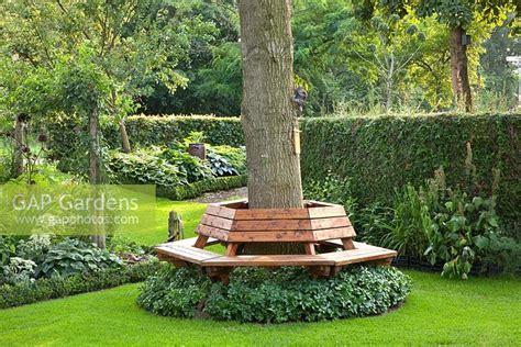 bench around tree trunk gap gardens bench around tree trunk image no 0218139 photo by elke borkowski