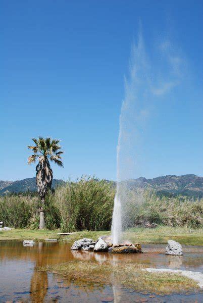 faithful geyser  california photo
