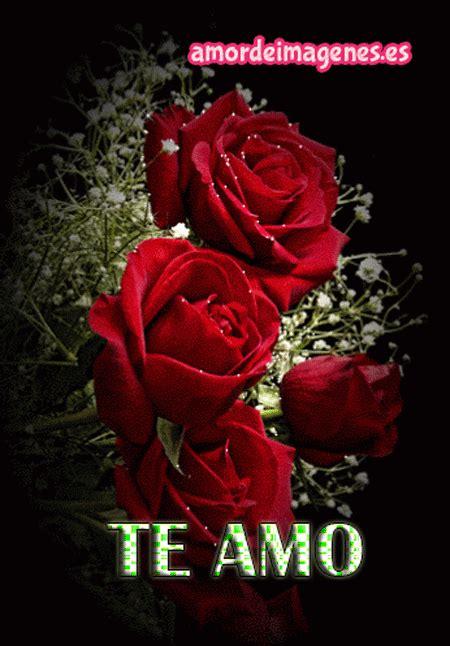 imagenes de rosas te amo rosas en movimiento