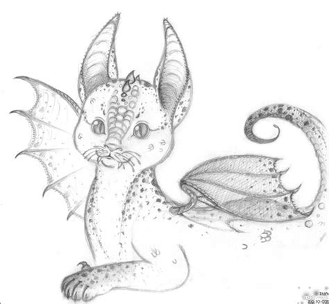 dragon cat by ina tyan on deviantart