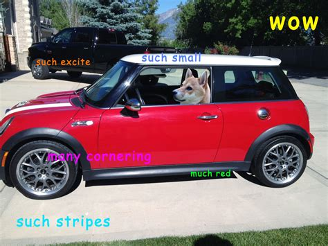 Doge Meme Car - doge meme car 28 images so in short an underfunded car
