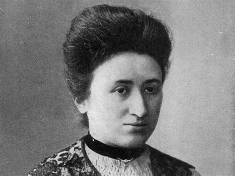 rosa a graphic biography of rosa luxemburg the enduring radical legacy of rosa luxemburg frontpage