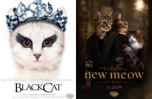 gallery for gt famous cats in movies