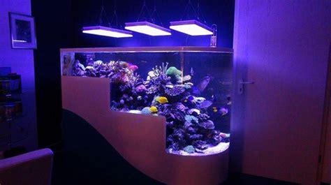 au bureau v2 upgrade ces aquariums au bureau avec des orphek